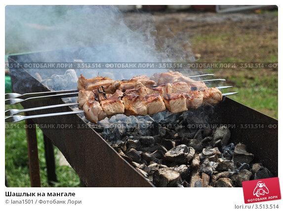 Купить «Шашлык на мангале», эксклюзивное фото № 3513514, снято 11 мая 2012 г. (c) lana1501 / Фотобанк Лори