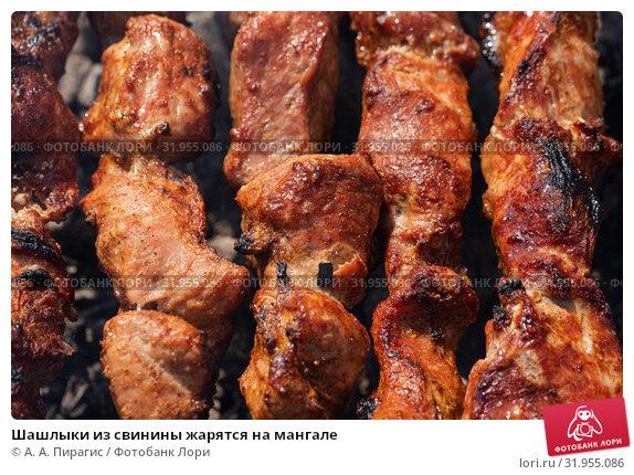Купить «Шашлыки из свинины жарятся на мангале», фото № 31955086, снято 14 июля 2019 г. (c) А. А. Пирагис / Фотобанк Лори
