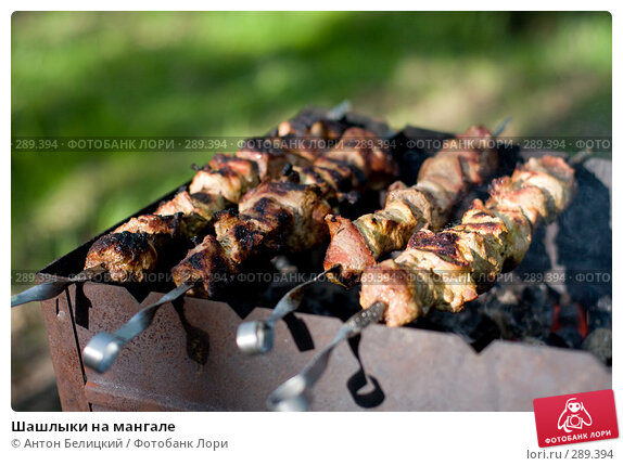 Шашлыки на мангале, фото № 289394, снято 17 мая 2008 г. (c) Антон Белицкий / Фотобанк Лори