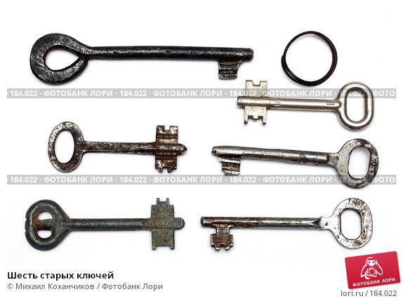 Купить «Шесть старых ключей», фото № 184022, снято 20 января 2008 г. (c) Михаил Коханчиков / Фотобанк Лори