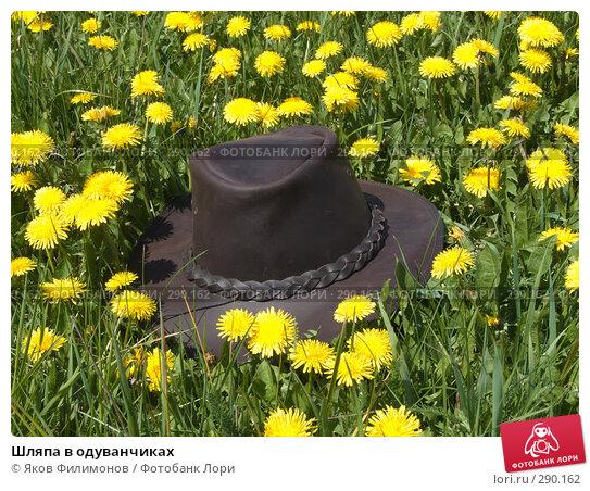 Шляпа в одуванчиках, фото № 290162, снято 18 мая 2008 г. (c) Яков Филимонов / Фотобанк Лори