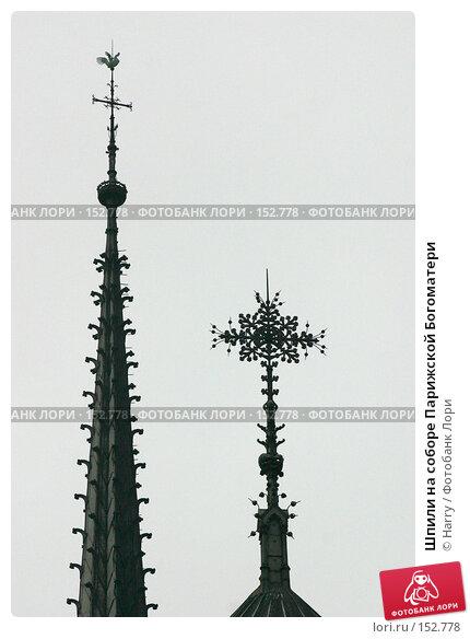 Купить «Шпили на соборе Парижской Богоматери», фото № 152778, снято 22 февраля 2006 г. (c) Harry / Фотобанк Лори