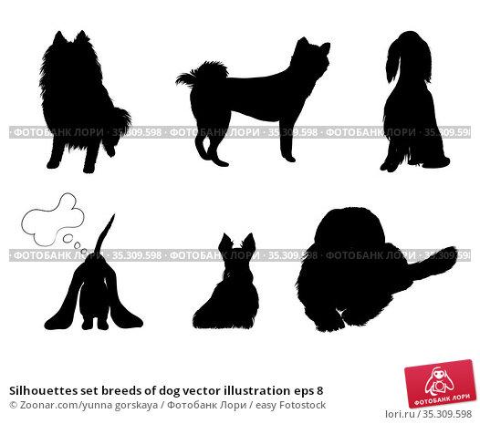 Silhouettes set breeds of dog vector illustration eps 8. Стоковое фото, фотограф Zoonar.com/yunna gorskaya / easy Fotostock / Фотобанк Лори