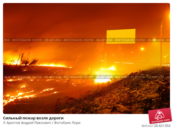 Купить «Сильный пожар возле дороги», фото № 28421054, снято 2 сентября 2014 г. (c) Арестов Андрей Павлович / Фотобанк Лори