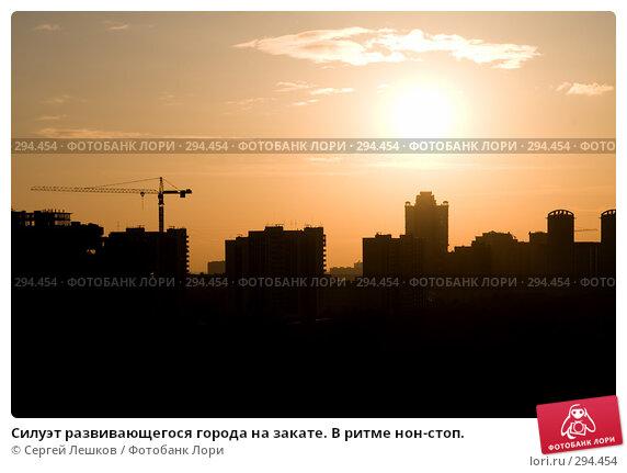 Силуэт развивающегося города на закате. В ритме нон-стоп., фото № 294454, снято 9 марта 2008 г. (c) Сергей Лешков / Фотобанк Лори