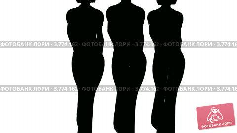 Купить «Силуэт женских фигур, которые идут на белом фоне», видеоролик № 3774162, снято 26 октября 2011 г. (c) Losevsky Pavel / Фотобанк Лори