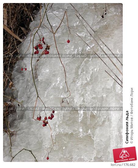 Купить «Симфония льда», фото № 176682, снято 10 января 2008 г. (c) Игорь Митов / Фотобанк Лори