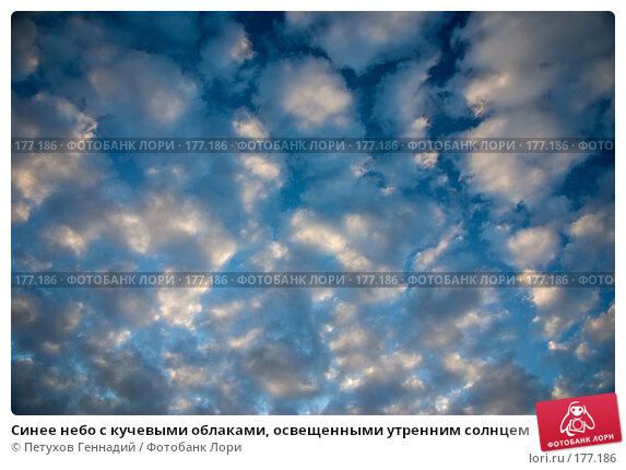 Синее небо с кучевыми облаками, освещенными утренним солнцем, фото № 177186, снято 23 июня 2007 г. (c) Петухов Геннадий / Фотобанк Лори
