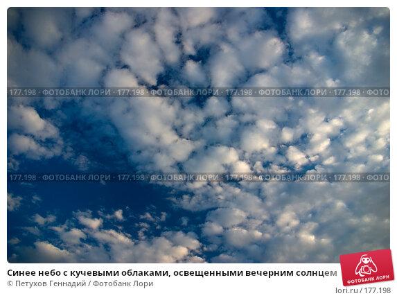 Синее небо с кучевыми облаками, освещенными вечерним солнцем, фото № 177198, снято 24 июня 2007 г. (c) Петухов Геннадий / Фотобанк Лори