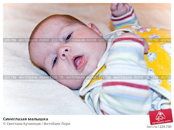 Синеглазая малышка, фото № 229730, снято 27 июля 2017 г. (c) Светлана Кучинская / Фотобанк Лори