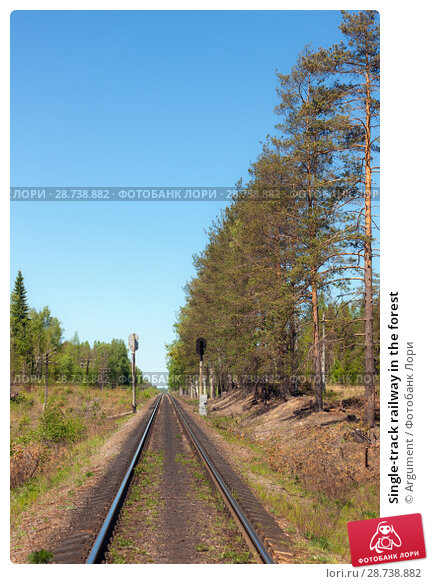 Купить «Single-track railway in the forest», фото № 28738882, снято 30 мая 2009 г. (c) Argument / Фотобанк Лори