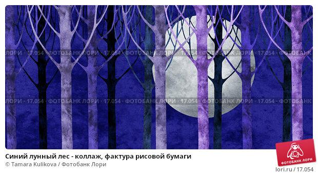 Синий лунный лес - коллаж, фактура рисовой бумаги, иллюстрация № 17054 (c) Tamara Kulikova / Фотобанк Лори