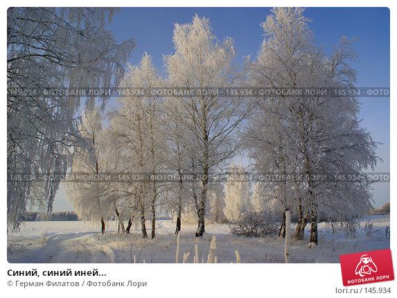 Синий, синий иней..., фото № 145934, снято 8 ноября 2007 г. (c) Герман Филатов / Фотобанк Лори