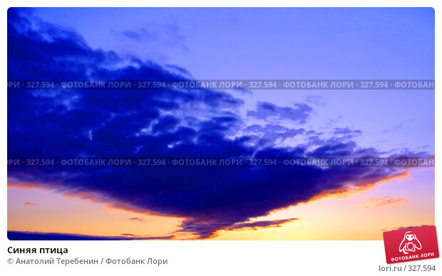 Купить «Синяя птица», фото № 327594, снято 3 июня 2008 г. (c) Анатолий Теребенин / Фотобанк Лори