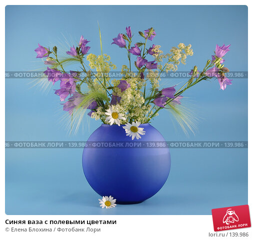Синяя ваза с полевыми цветами, фото № 139986, снято 22 июня 2007 г. (c) Елена Блохина / Фотобанк Лори