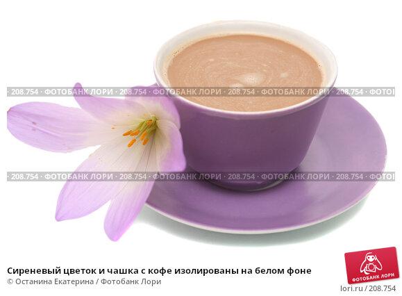 Сиреневый цветок и чашка с кофе изолированы на белом фоне, фото № 208754, снято 3 октября 2007 г. (c) Останина Екатерина / Фотобанк Лори