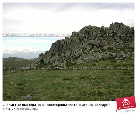 Скалистые выходы на высокогорном плато. Витоша, Болгария, фото № 67182, снято 26 июня 2004 г. (c) Harry / Фотобанк Лори
