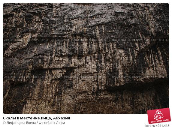 Скалы в местечке Рица, Абхазия, фото № 241418, снято 22 марта 2008 г. (c) Лифанцева Елена / Фотобанк Лори