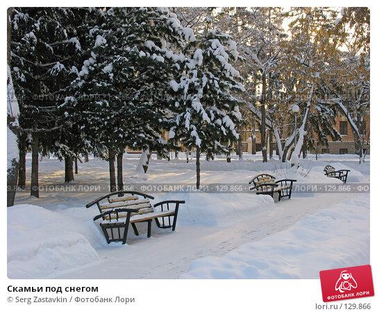 Скамьи под снегом, фото № 129866, снято 22 декабря 2004 г. (c) Serg Zastavkin / Фотобанк Лори