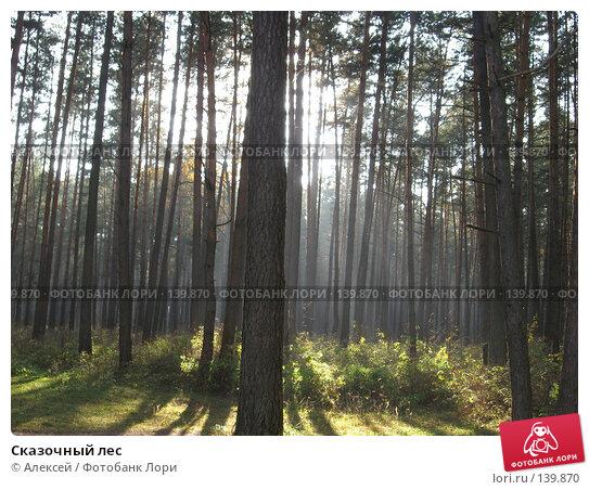 Сказочный лес, фото № 139870, снято 26 октября 2007 г. (c) Алексей / Фотобанк Лори