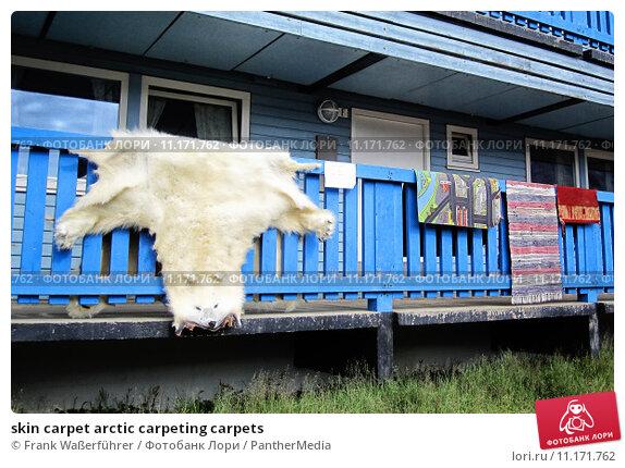 Купить «skin carpet arctic carpeting carpets», фото № 11171762, снято 27 марта 2019 г. (c) PantherMedia / Фотобанк Лори