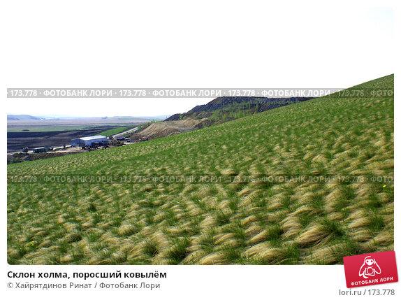 Склон холма, поросший ковылём, фото № 173778, снято 20 мая 2007 г. (c) Хайрятдинов Ринат / Фотобанк Лори