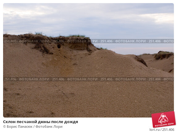 Склон песчаной дюны после дождя, фото № 251406, снято 11 апреля 2008 г. (c) Борис Панасюк / Фотобанк Лори