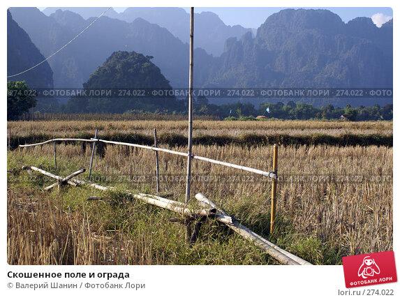 Скошенное поле и ограда, фото № 274022, снято 7 декабря 2007 г. (c) Валерий Шанин / Фотобанк Лори