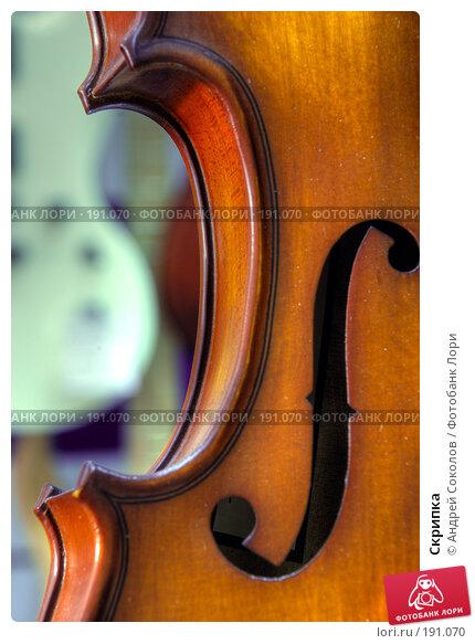 Скрипка, фото № 191070, снято 30 января 2008 г. (c) Андрей Соколов / Фотобанк Лори