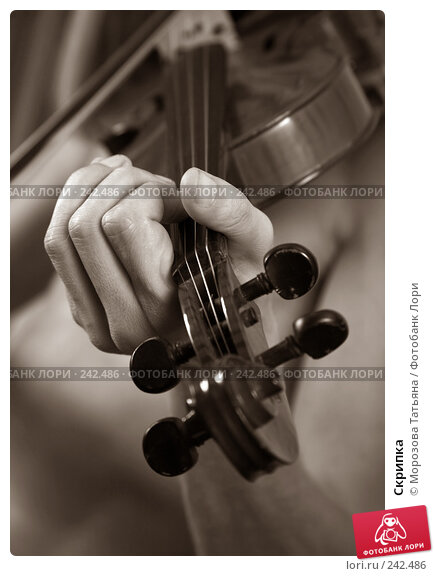Скрипка, фото № 242486, снято 3 апреля 2008 г. (c) Морозова Татьяна / Фотобанк Лори