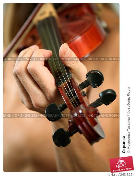 Скрипка, фото № 243322, снято 3 апреля 2008 г. (c) Морозова Татьяна / Фотобанк Лори