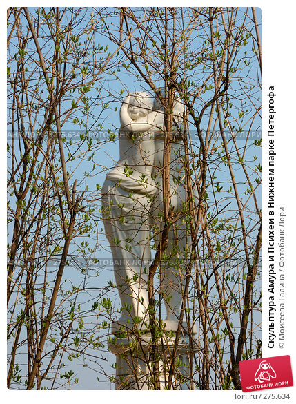 Скульптура Амура и Психеи в Нижнем парке Петергофа, фото № 275634, снято 2 мая 2008 г. (c) Моисеева Галина / Фотобанк Лори