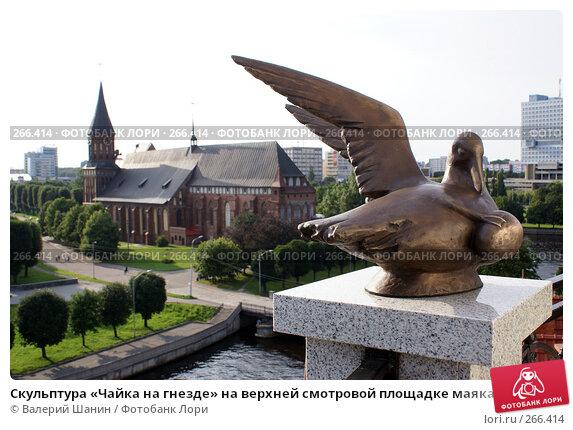 Скульптура «Чайка на гнезде» на верхней смотровой площадке маяка. Калининград, фото № 266414, снято 21 июля 2007 г. (c) Валерий Шанин / Фотобанк Лори