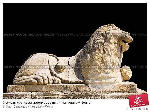 Скульптура льва изолированная на черном фоне, фото № 203958, снято 26 апреля 2007 г. (c) Олег Селезнев / Фотобанк Лори