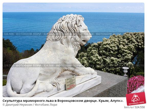 Скульптура мраморного льва в Воронцовском дворце. Крым, Алупка., эксклюзивное фото № 324558, снято 29 апреля 2008 г. (c) Дмитрий Неумоин / Фотобанк Лори