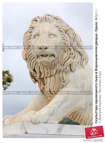 Скульптура мраморного льва в Воронцовском дворце. Крым, Алупка., эксклюзивное фото № 324570, снято 29 апреля 2008 г. (c) Дмитрий Неумоин / Фотобанк Лори