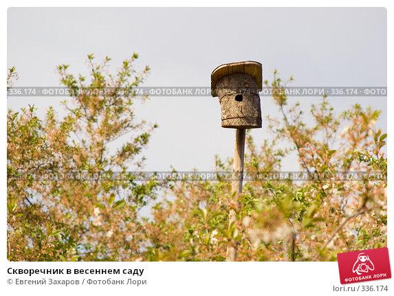 Скворечник в весеннем саду, фото № 336174, снято 18 мая 2008 г. (c) Евгений Захаров / Фотобанк Лори