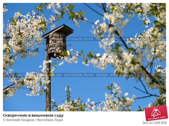 Купить «Скворечник в вишневом саду», фото № 293554, снято 9 мая 2008 г. (c) Евгений Захаров / Фотобанк Лори