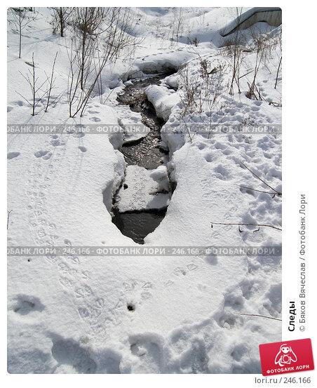 Следы, фото № 246166, снято 22 марта 2008 г. (c) Бяков Вячеслав / Фотобанк Лори