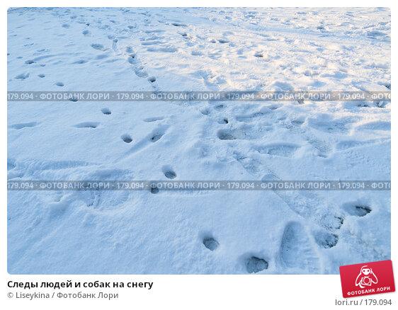Следы людей и собак на снегу, фото № 179094, снято 2 января 2008 г. (c) Liseykina / Фотобанк Лори