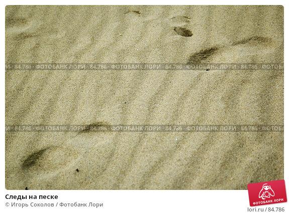 Следы на песке, фото № 84786, снято 24 марта 2017 г. (c) Игорь Соколов / Фотобанк Лори
