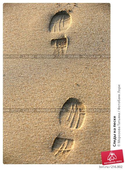 Купить «Следы на песке», фото № 216802, снято 24 февраля 2008 г. (c) Морозова Татьяна / Фотобанк Лори