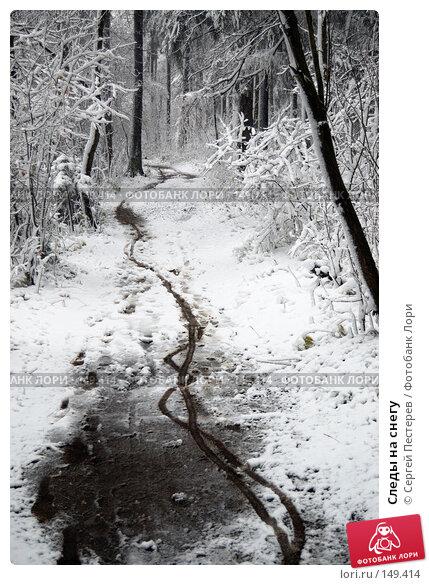 Следы на снегу, фото № 149414, снято 14 октября 2007 г. (c) Сергей Пестерев / Фотобанк Лори