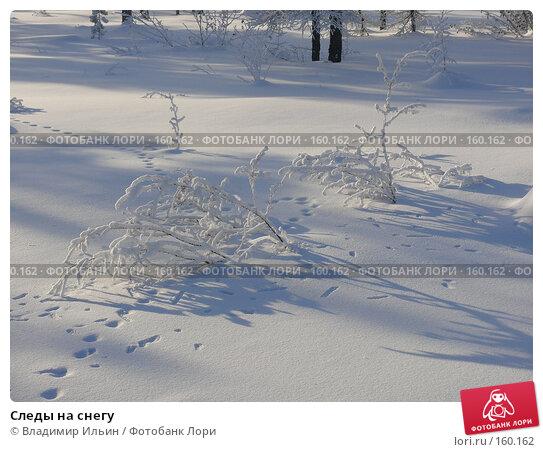 Следы на снегу, фото № 160162, снято 24 декабря 2007 г. (c) Владимир Ильин / Фотобанк Лори
