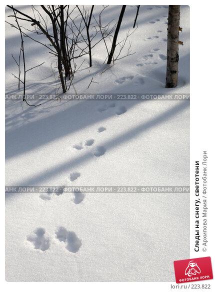 Следы на снегу, светотени, фото № 223822, снято 10 марта 2008 г. (c) Архипова Мария / Фотобанк Лори