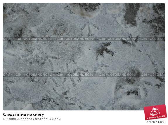 Следы птиц на снегу, фото № 1030, снято 1 марта 2006 г. (c) Юлия Яковлева / Фотобанк Лори