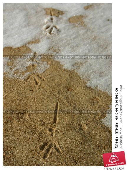Купить «Следы птицы на снегу и песке», фото № 54506, снято 24 апреля 2018 г. (c) Елена Мельникова / Фотобанк Лори