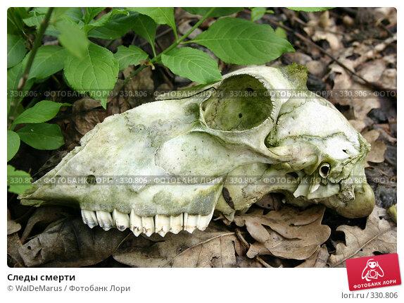 Следы смерти, фото № 330806, снято 2 мая 2008 г. (c) WalDeMarus / Фотобанк Лори