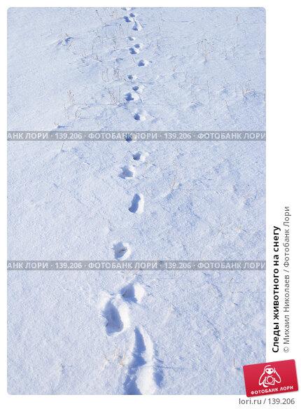 Купить «Следы животного на снегу», фото № 139206, снято 2 декабря 2007 г. (c) Михаил Николаев / Фотобанк Лори