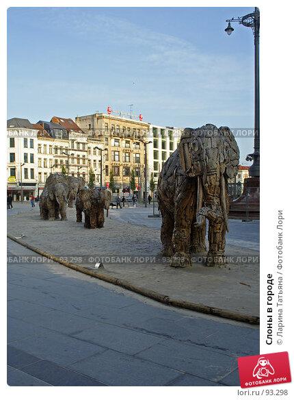 Слоны в городе, фото № 93298, снято 27 сентября 2007 г. (c) Ларина Татьяна / Фотобанк Лори